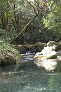 Tashiro River