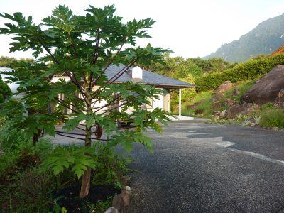 Minshuku Sora Mame – Koshima
