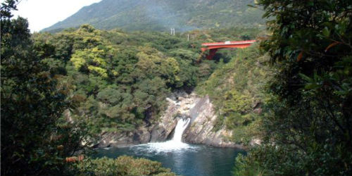 yakushima book an activity