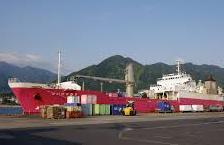 hibiscus ferry
